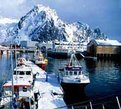 挪威极地之鲜三文鱼