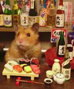 """摄影师打造迷你日本酒吧 超萌仓鼠出任""""酒保"""""""