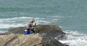 避免小杂鱼害鱼干扰