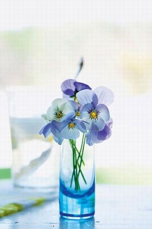 享受生活 DIY插花给家添一抹春色